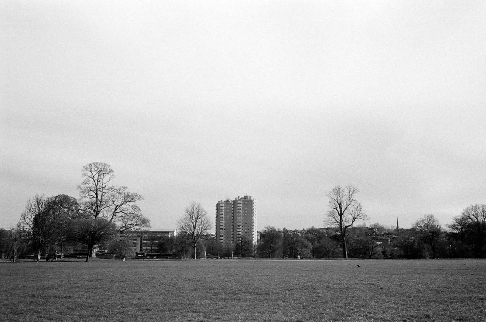 Fomapan 100 image of Brockwell park.