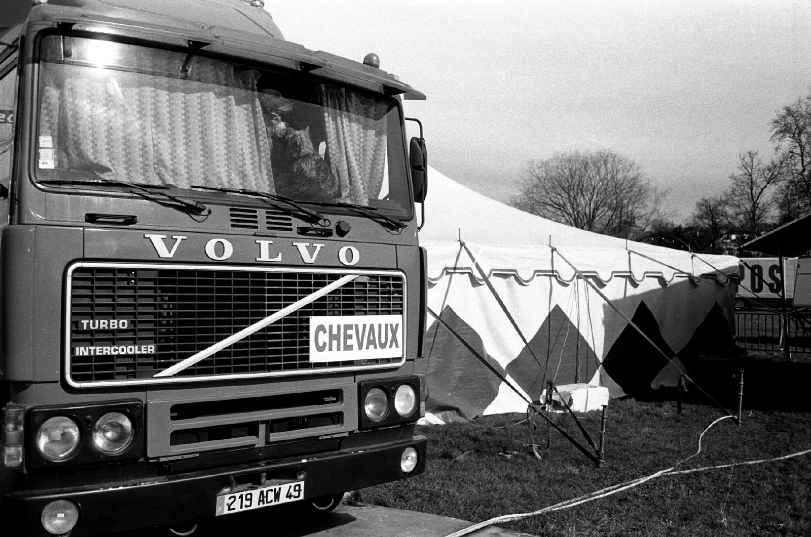 Dog in front of truck in fairground. Black and white film image.