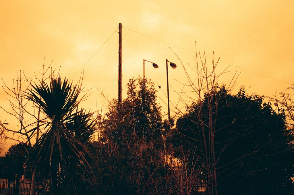 Here is our Redscale Kodak ColorPlus 200 Film Review. Lamposts and bushes