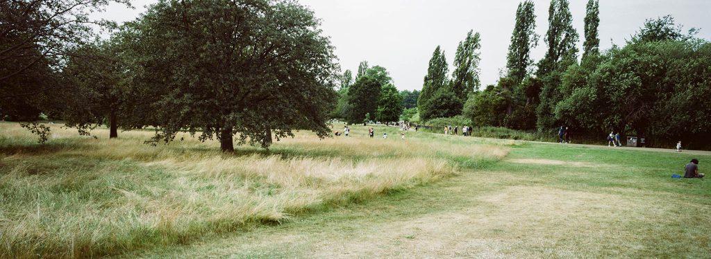 Kodak Portra 160 35mm Film Hyde Park