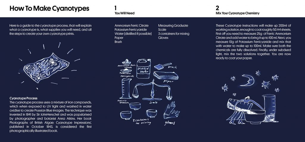 Anja Schwegler - How To Make Cyanotypes