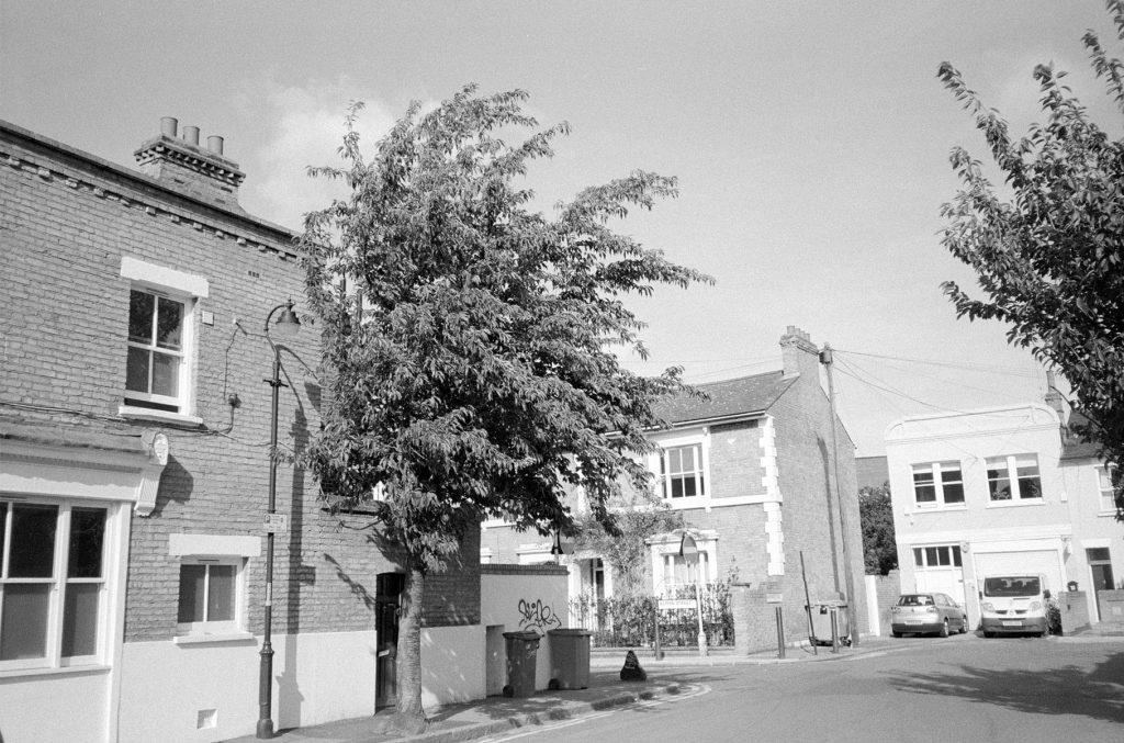 Ilford Delta 400 Street Windy Tree Peckham